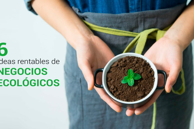 ideas rentables de negocios ecologicos