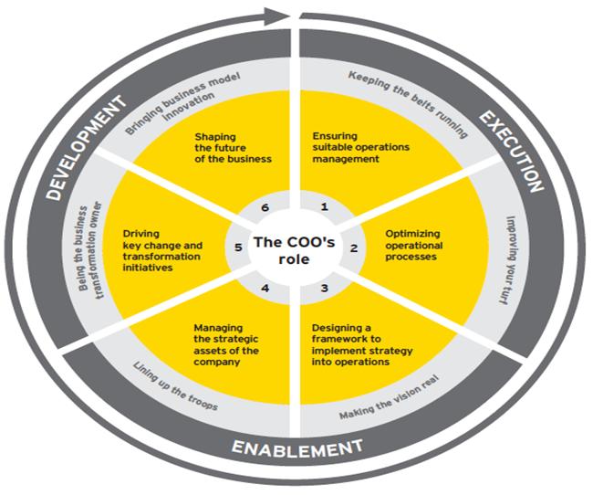 Gráfico resumen del alcance del rol de COO extraido del informe