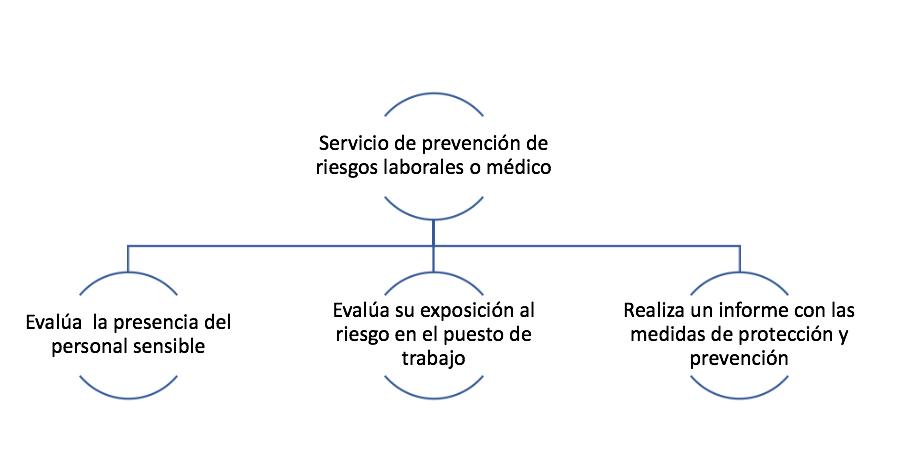 https://d2xtbylwu97mzb.cloudfront.net/blog/prevencion-riesgos-laborales/wp-content/uploads/2020/06/Captura-de-pantalla-2020-06-15-a-las-13.40.59.png?x18402